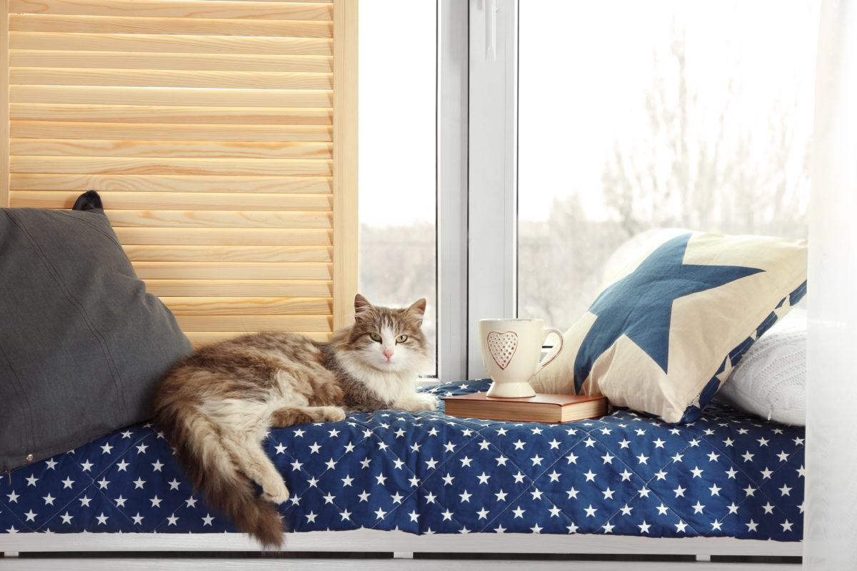 Custom Window Seat Cushions Squabs The Cushion Company